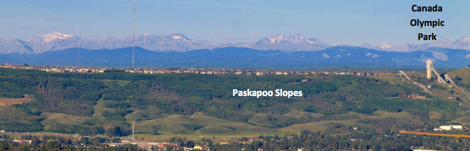 Paskapoo-Arial-Picture