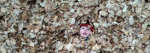 Kids Hiding In The Fall Leaves